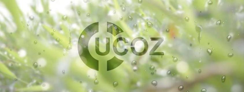 Обратный звонок для ucoz