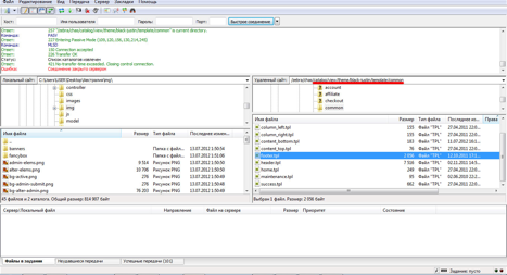 Откройте файл footer.tpl и перед тегом body вставьте код виджета