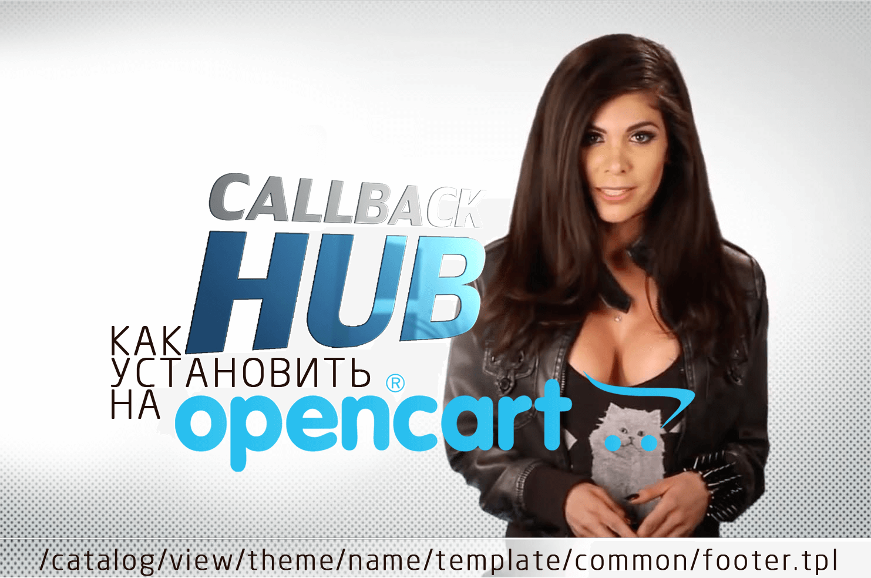 Как установить CALLBACK HUB на OpenCart